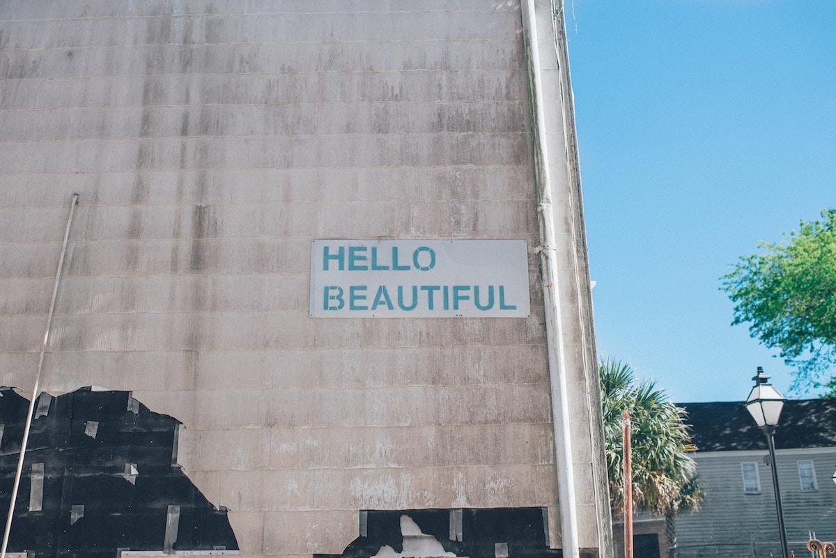 Von der Schönheit, die die Welt rettet